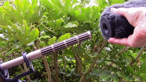 Putting on the Rycote Classic-Softie